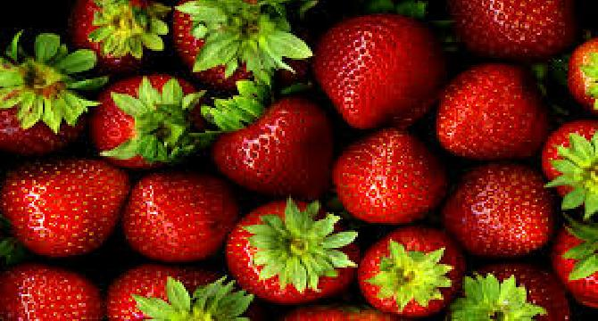 Strawberry Not Just A Beautiful Fruit