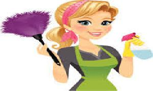 how to clean daily home