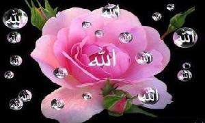 Start trading with the name of ALLAH ALMIGHTY