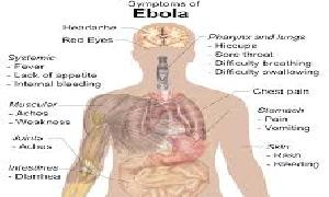 Basic Facts About Ebola Virus Disease ( Part 2)